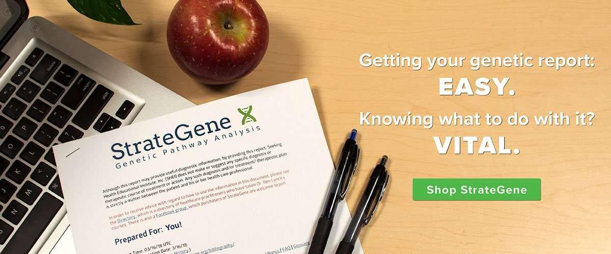 Seeking Health Stratagene Genetic Pathway Planner Analysis